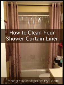 shower curtain liner 2